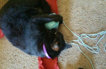 baggy-blue-yarn